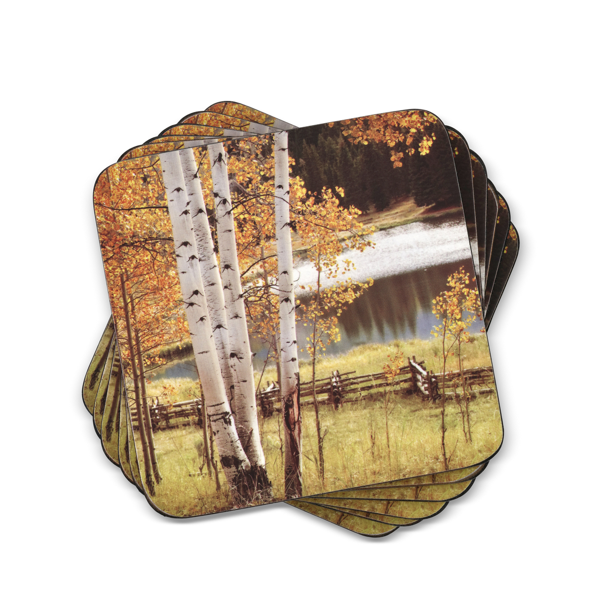 Pimpernel Birch Beauty Coasters Set of 6 image number 0