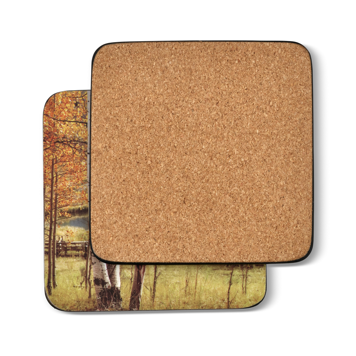 Pimpernel Birch Beauty Coasters Set of 6 image number 1